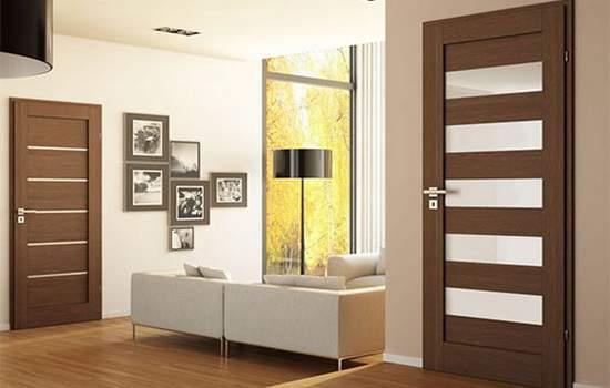 двери дизайн фото